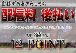12point