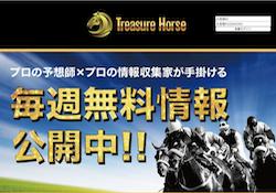 トレジャーホース(TreasureHorse)